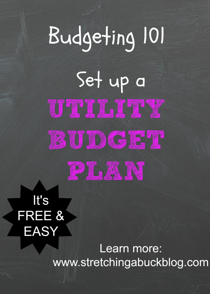 how do budget utility plans work