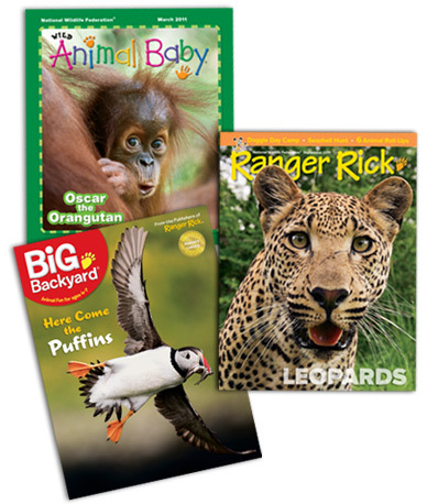 ranger rick my big backyard or wild animal baby magazine subscription