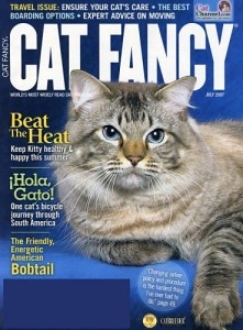 Cat-Fancy-6