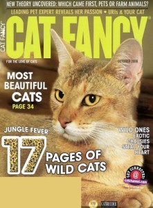 Cat-Fancy-8