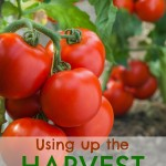 Thumbnail image for Using Up the End of the Year Harvest