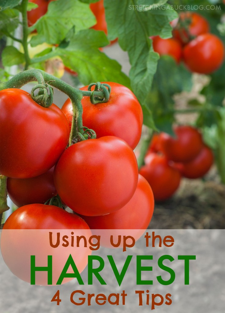 using up the end of the year harvest tips