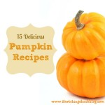 Thumbnail image for 15 Delicious Pumpkin Recipes