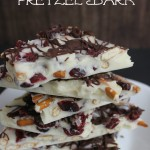 Thumbnail image for Cranberry Pretzel Bark Recipe | Great DIY Gift Idea!