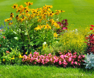 How to Plant a Flower Bed