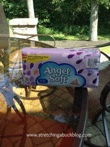 angel soft on the go tissues review coupon