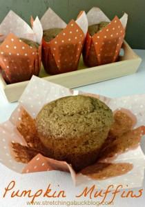 easy pumpkin muffin recipes