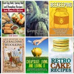 Thumbnail image for 10 Free Amazon Kindle Books | 10/2/15