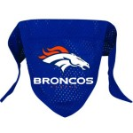 Thumbnail image for Denver Broncos Mesh Dog Bandana for $11.95