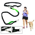 Thumbnail image for Hands Free Retractable Reflective Dog Leash for $17.77