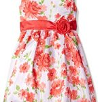 Thumbnail image for American Princess Little Girls Floral Easter Dress for $19.99