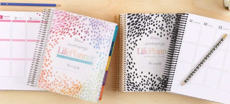 2018 Erin Condren Life Planner Review