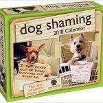 Thumbnail image for Dog Shaming 2018 Day-to-Day Calendar for $10.39