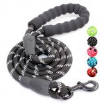 Thumbnail image for 5 Ft Reflective Strong Dog Leash with Padded Handle for $14.99