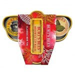 Thumbnail image for Burt's Bees Classic Bee Tin Holiday Gift Set for $6.67
