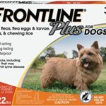 Thumbnail image for Frontline Plus Flea & Tick Treatment for Small Dogs for $26.99 Shipped