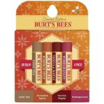 Thumbnail image for Burt's Bees Moisturizing Variety Pack Lip Balm for $2.25 per Tube